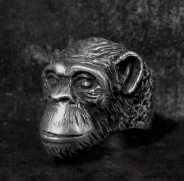 Chimp Ring
