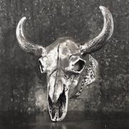 Buffalo Skull Ring