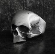 Birdman Skull Ring