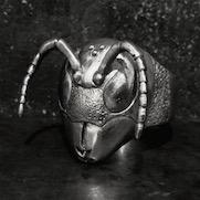 Vespinae ring