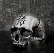All Day Skull Ring